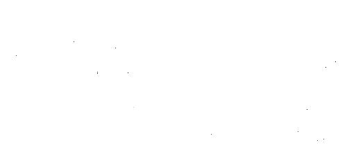 logo-phyts-blanc