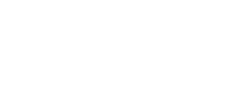 logo-zao-blanc